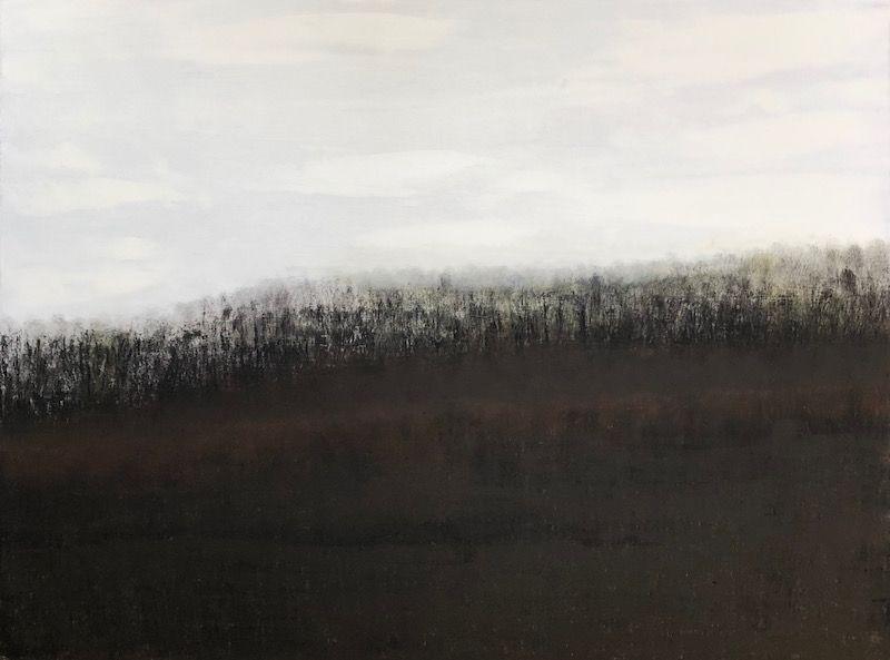 "Bearing Witness, oil on canvas, 36″ x 48,"" Copyright © 2019 chriscoxart.com"